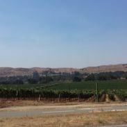 Discovering A New–actually, old–Northern California Wine Country